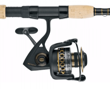 Best Saltwater Spinning Reels for Surf and Inshore Fishing
