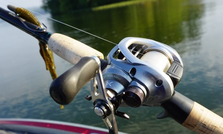 Image result for What Kind Of Reel Should A Beginner Use For Bass Fishing