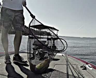 Best Fishing Nets for Landing Big Bass
