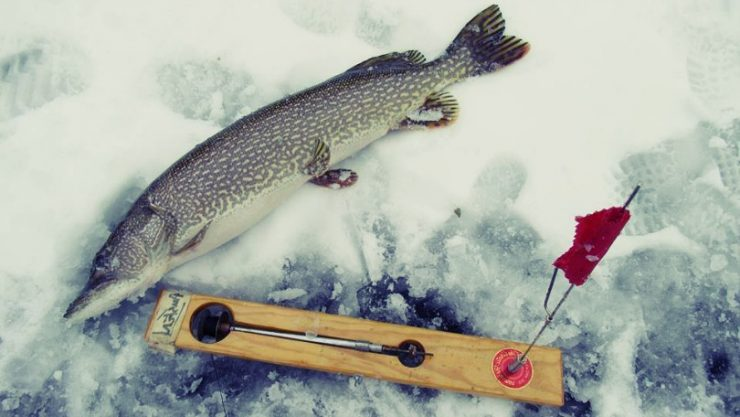 Tip Up Ice Fishing Tips